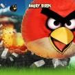 Les Angry Birds débarquent sur les Freebox Révolution