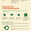 Google Panda : Premier anniversaire du filtre de nettoyage