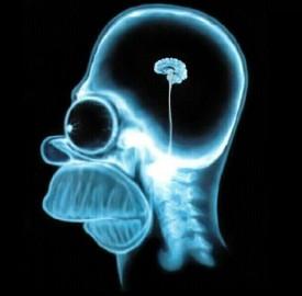 Des chercheurs ont trouvé un moyen de lire vos pensées