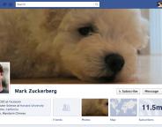 Facebook : la présentation Timeline devrait arriver le 29 février pour les marques