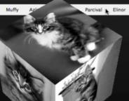 Firefox : Transformations CSS3 d'un cube (3D)