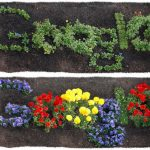 Google : Doodle Earth Day 2012
