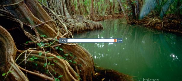 Microsoft : Lancement de Bing Desktop en bêta