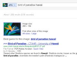 Google : Recherche par image
