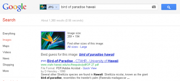 Google : Recherche par image & Knowledge Graph
