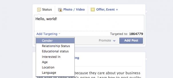Facebook Pages : Ciblage de statut sur les données privées