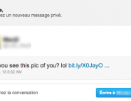 Twitter : Vague de phishing par message privé (DM)