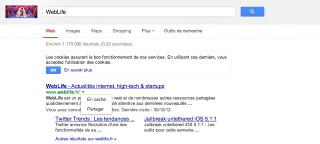 Google : Cache & partage dans les SERPS