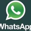 WhatsApp : 250 millions d'utilisateurs actifs mensuel