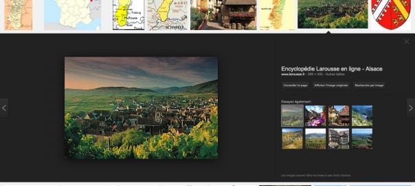 Google Images : Nouvelle interface utilisateur pour le moteur