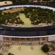 Apple : Nouveau siège social en forme de vaisseau spatial