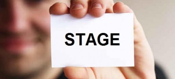 Stage : Top 10 des entreprises qui paient le mieux