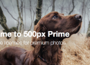 500px Prime : Plateforme de vente de photos en version finale