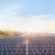 Apple : Plus de 40 hectares pour une ferme solaire