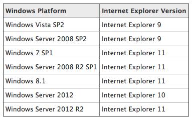 Internet Explorer Support