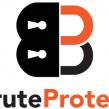 WordPress : Automattic met la main sur BruteProtect