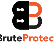 WordPress : Automattic met la main sur BruteProtect