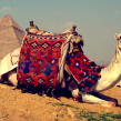 Google Street View : L'Egypte, les pyramides et le Sphinx