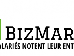 Logo BizMarks