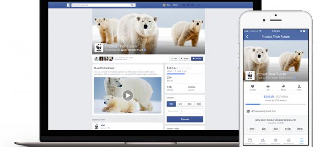 Facebook Fundraiser : Page de don
