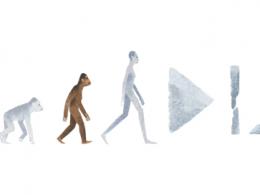 Google : Doodle Lucy Australopithèque