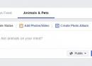 Facebook : Des filtres thématiques pour le fil d'actualité