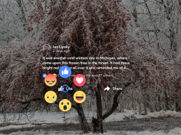 Facebook : Oculus Gear VR & Reactions sur vidéo 360°