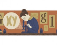 Google : Nettie Stevens et les chromosomes XY en doodle