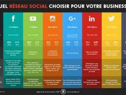 Choix des réseaux sociaux