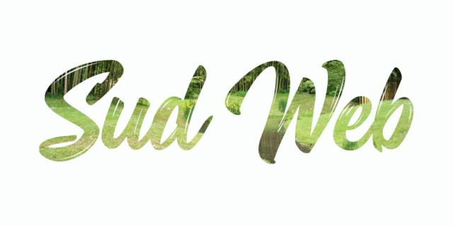 Logo Sud Web